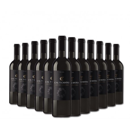 SELECTION OF 12 BOTTLES OF SPANISH RED WINE CAL Y CANTO D.O. TIERRA DE CASTILLA