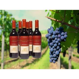 6 botellas de Puerta vieja crianza 2011 (Rioja D.o.)