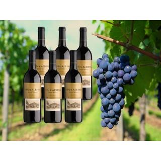 6 botellas magnum 1,5l de Viña Albina reserva